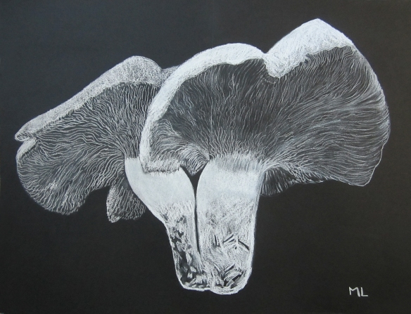 Black Background Drawing by Martine Lagasse