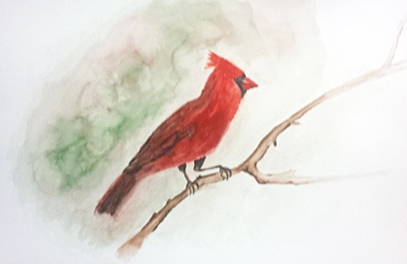 Watercolors by Irina Barbu